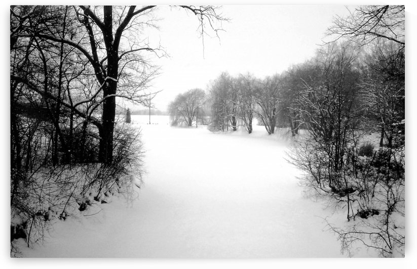 Winter Landscape Herrick Lake Forest Preserve Dupage County IL 1981 by ImagesAsArt By John Louis Benzin