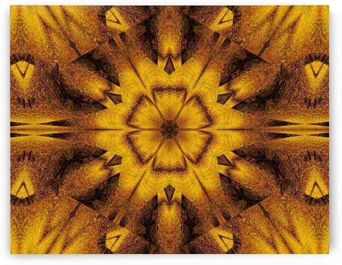 Spiritual Sunshine  20 by Sherrie Larch