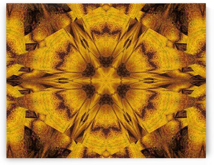 Spiritual Sunshine  39 by Sherrie Larch