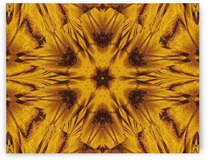 Spiritual Sunshine  42 by Sherrie Larch