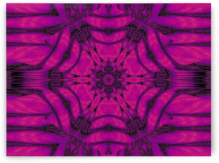 Purple Desert Song 19 by Sherrie Larch