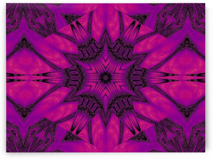 Purple Desert Song 20 by Sherrie Larch