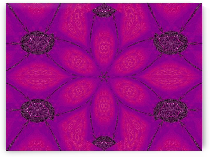 Purple Desert Song 27 by Sherrie Larch