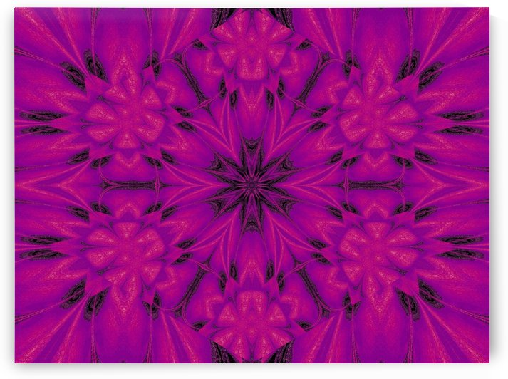 Purple Desert Song 32 by Sherrie Larch