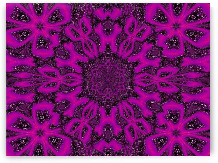 Purple Desert Song 38 by Sherrie Larch