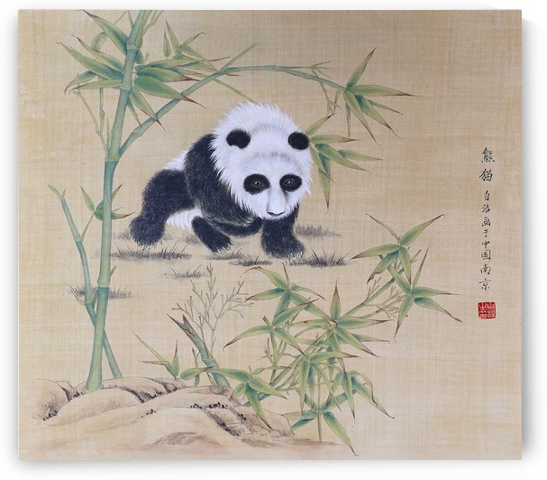 Panda by Birgit Moldenhauer