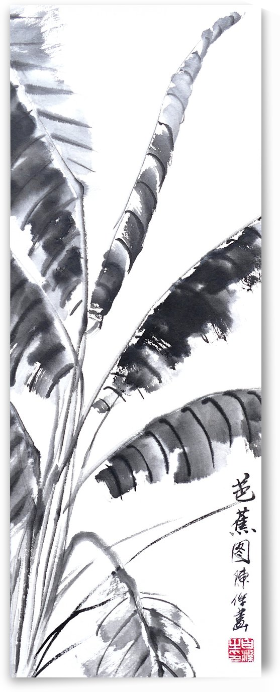 Banana Leaf by Birgit Moldenhauer