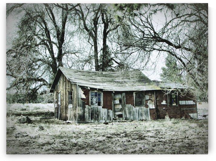 Abandoned Homestead by Aurelia Schanzenbacher Sisters Fine Arts