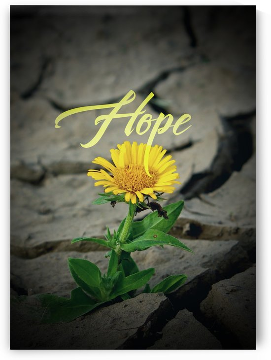 Hope Never Dies by ABConcepts