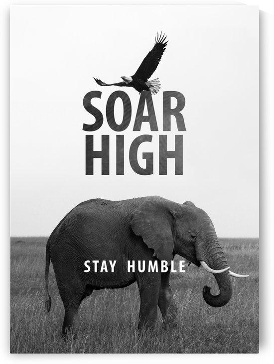 Soar high like an eagle. Stay humble like an elephant. by ABConcepts