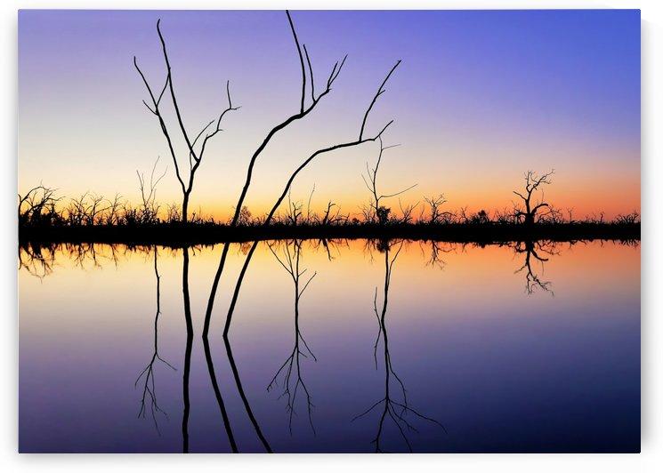 Reflections on Pamamaroo Lake by Lexa Harpell
