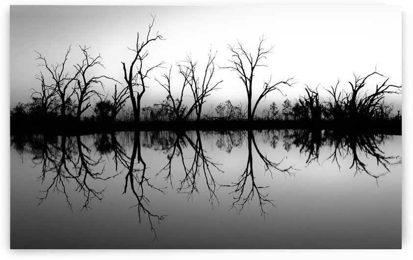 Sunset Reflection on Pamamaroo in B&W by Lexa Harpell