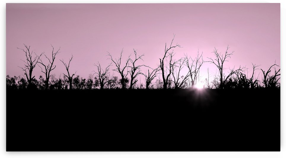 Setting Sun on Pamamaroo Lake - Monotone by Lexa Harpell