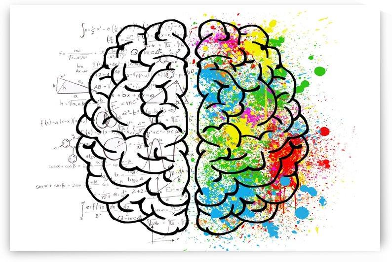 brain mind psychology idea drawing by Shamudy