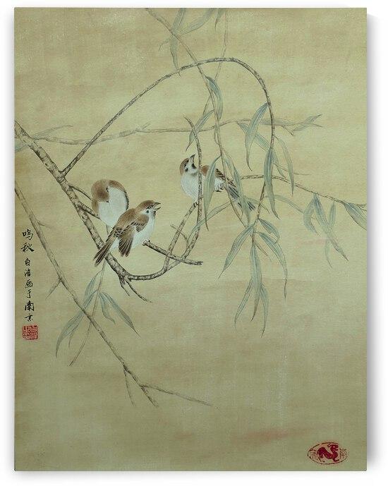 Sparrow in Willow by Birgit Moldenhauer