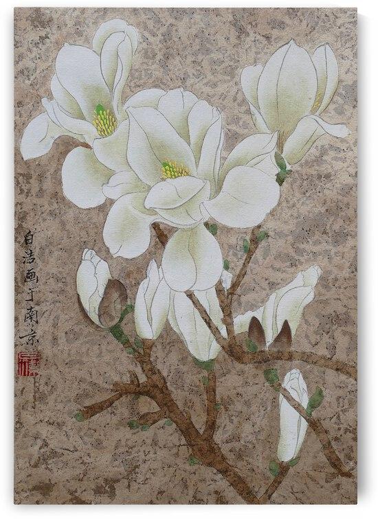 Magnolia Blossom by Birgit Moldenhauer