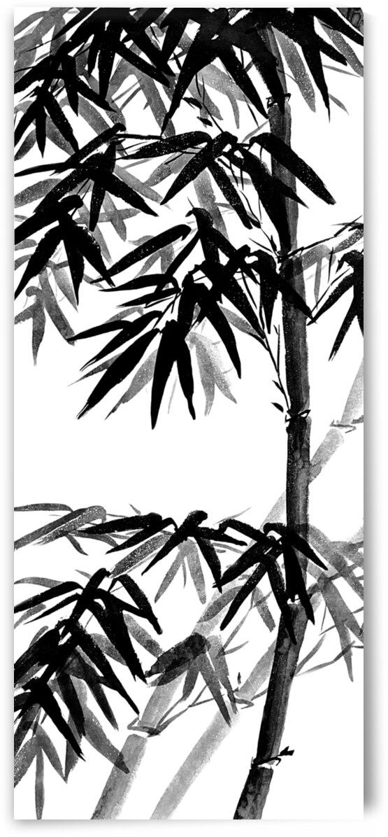 Bamboo - black and white by Birgit Moldenhauer