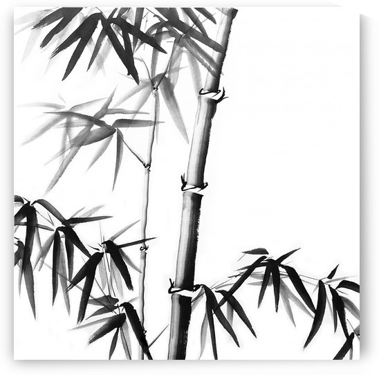 Bamboo - Chinese Style by Birgit Moldenhauer