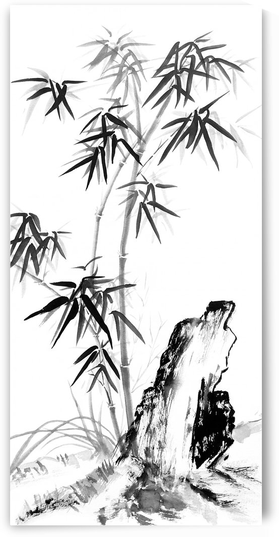 Bamboo with Stone black and white by Birgit Moldenhauer