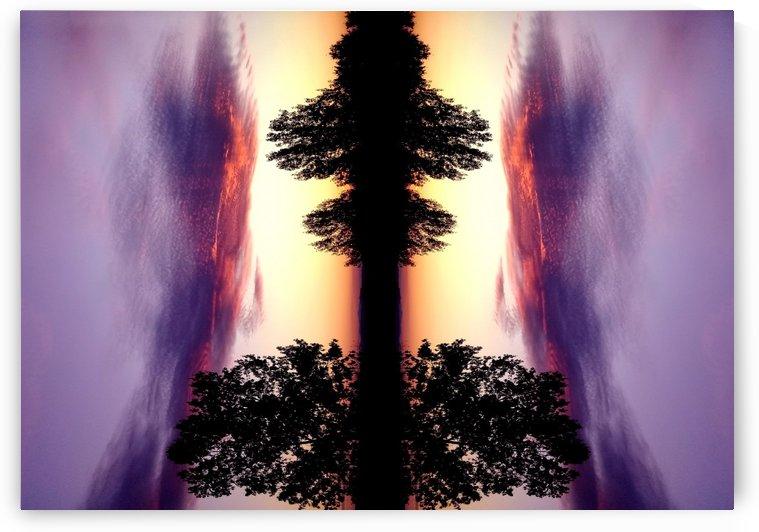 nube 47 by Carlos Manzcera