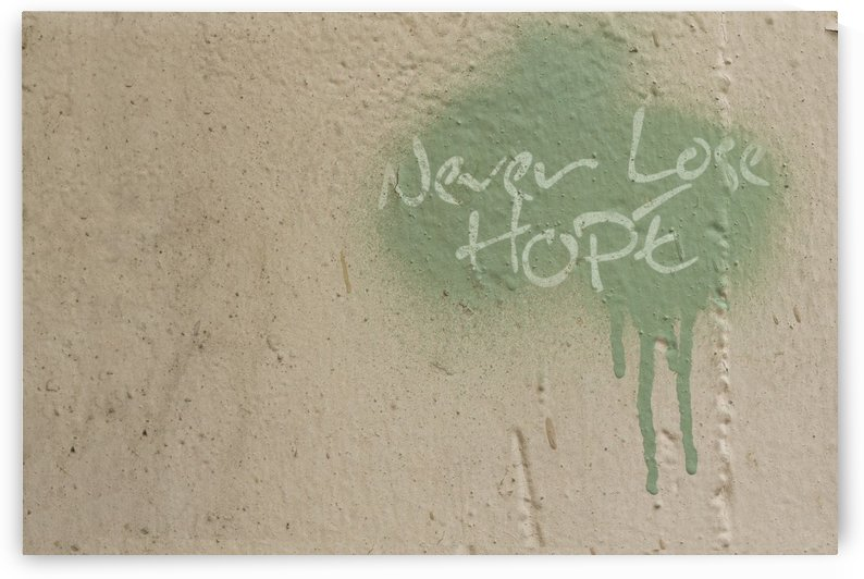 Never Loose Hope by Alex Pell