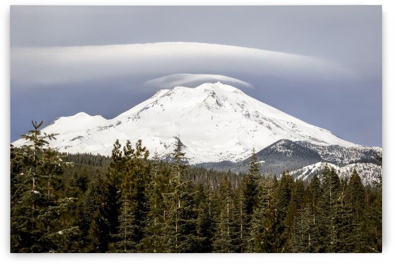 Mt. Shasta Glory by Gary Geddes