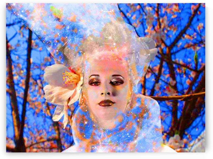 Magic Flower by Matthew Lacey