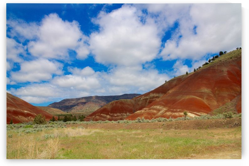 Painted Hills by Heather Huerta