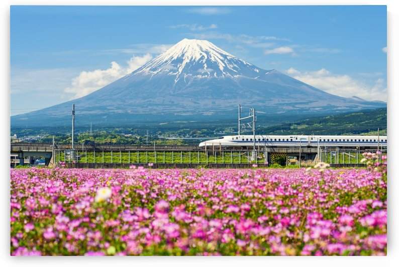 Fuji with shinkansen by CyclopsfromHungary
