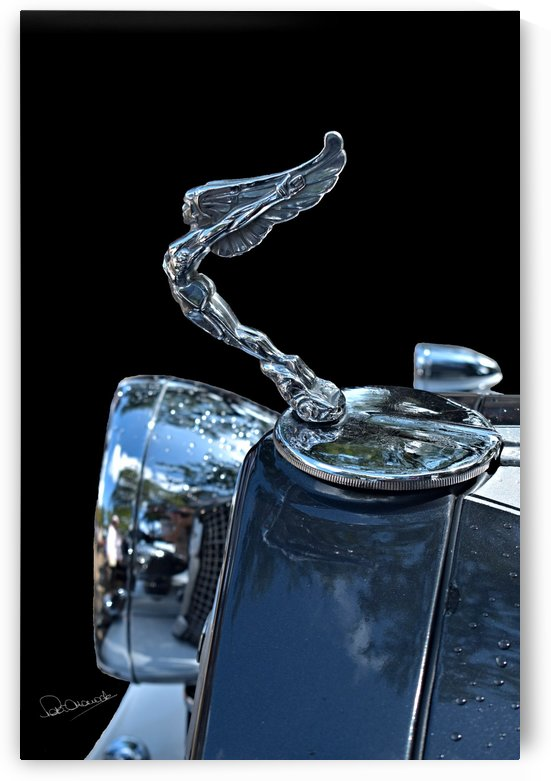 Indian Hood Ornament by Shadow and Form