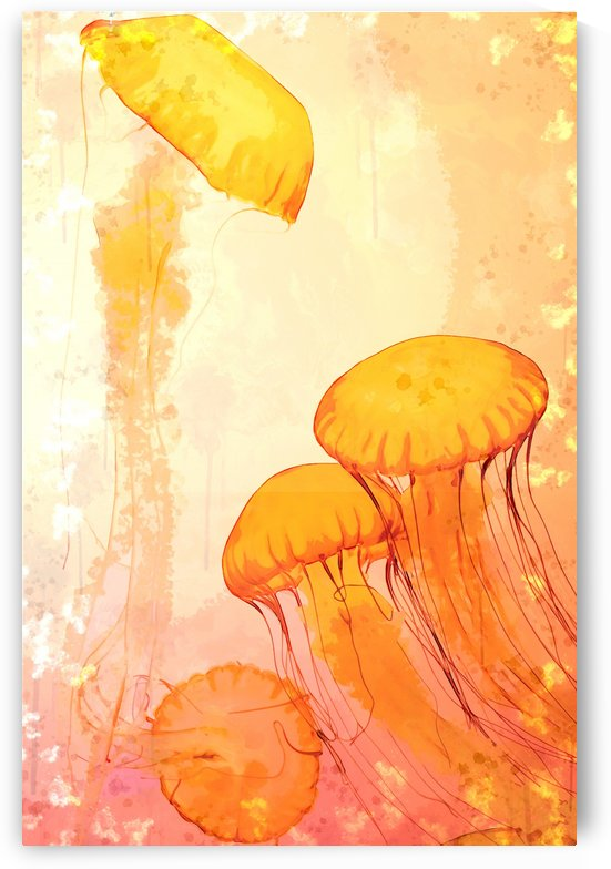 Jelly Fantasy  by Erin Mac
