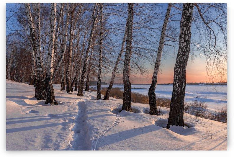 DSC_9729 1 by Dobrydnev