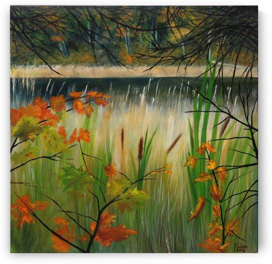 Gatineau Black Lake by Joseph Coban