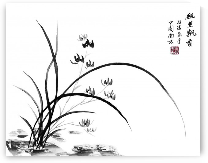 Chinese Iris by Birgit Moldenhauer