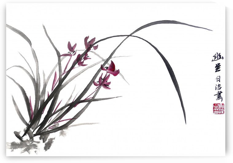 Chinese Orchid by Birgit Moldenhauer