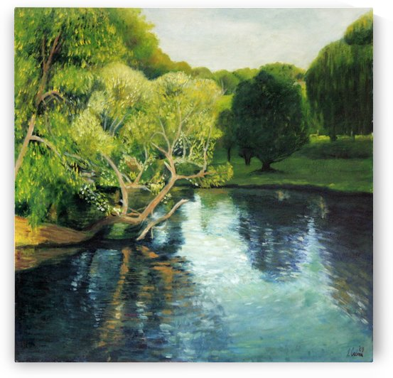 Arboretum reflections by Joseph Coban