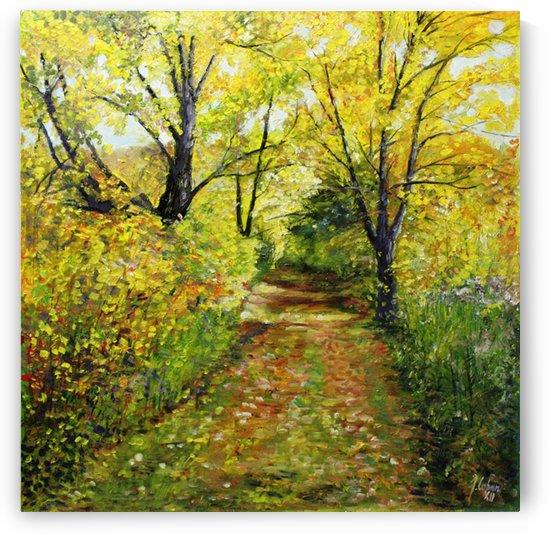 Path in Gatineau by Joseph Coban