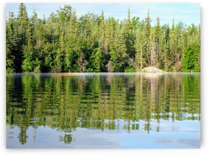 Twin Lake 1 by Stuart Spofford