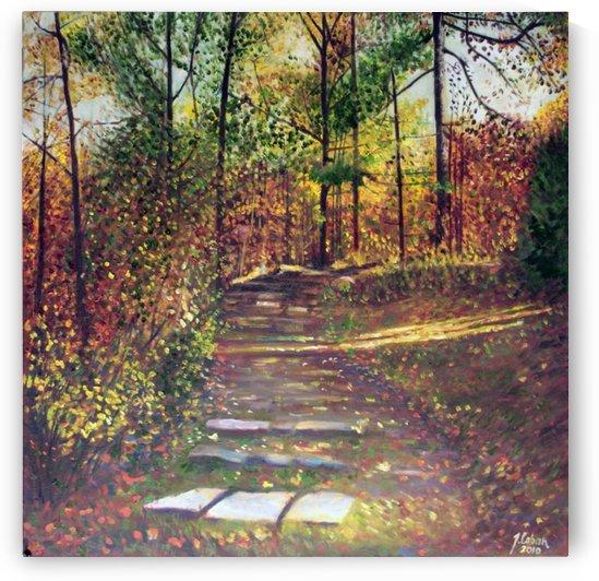 Steps in Gatineau by Joseph Coban