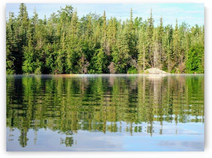 Twin Lake 1_1582421897.8056 by Stuart Spofford