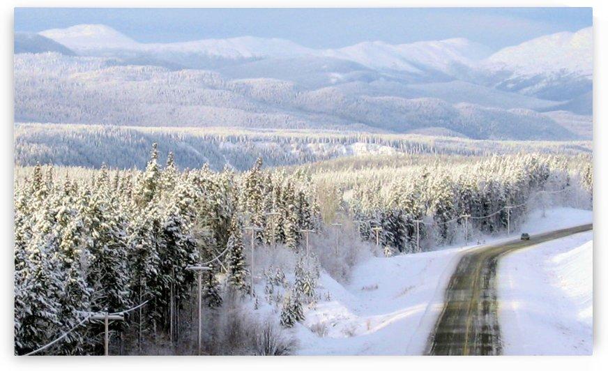 Klondike Highway South by Stuart Spofford