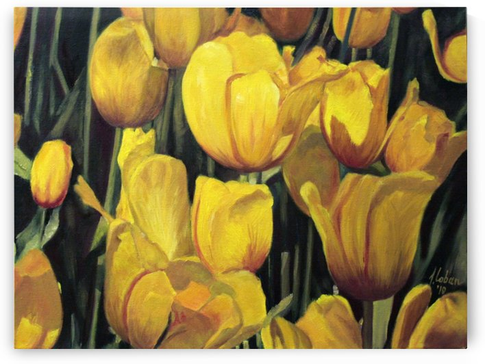 Yellow tulips afternoon by Joseph Coban