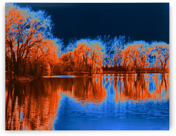 Herrick Lake Willow Trees Solarization In Color by ImagesAsArt By John Louis Benzin