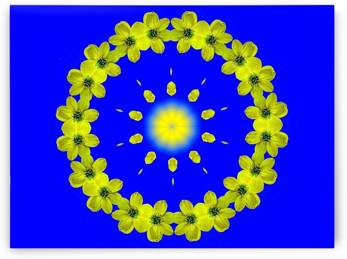 A Flower Garland Surrounds The Nucleus by ImagesAsArt By John Louis Benzin