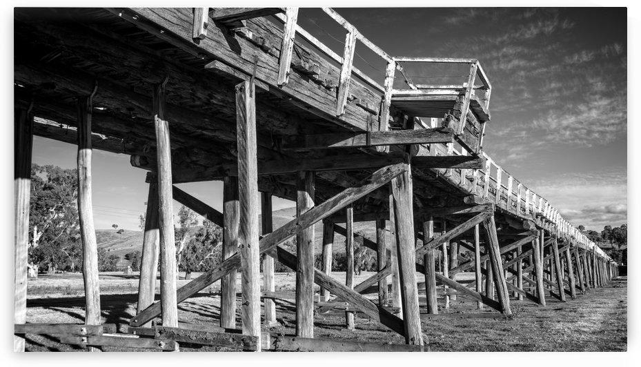 Old disused railway bridge New South Wales australia Mono by Downundershooter