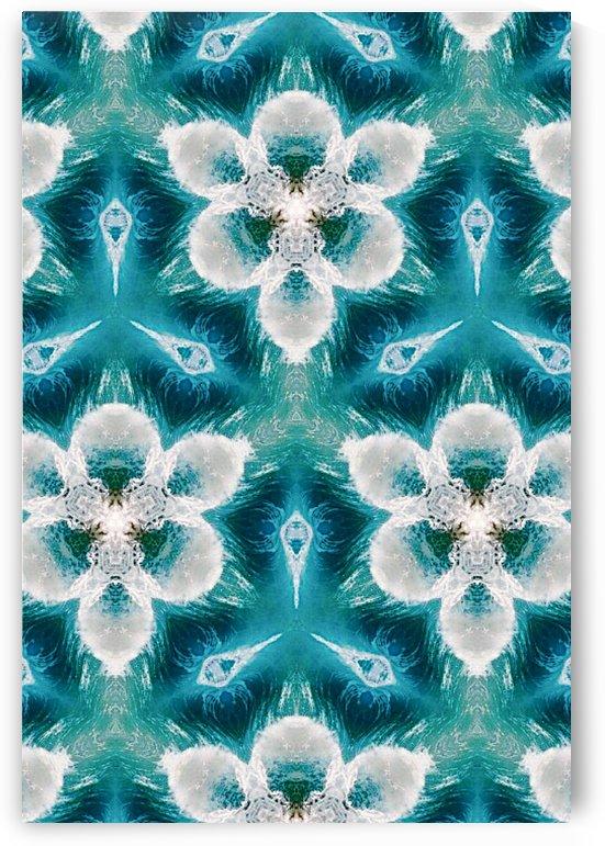 KaleidoscopeI of Aquatic Bloom by Jeremy Lyman