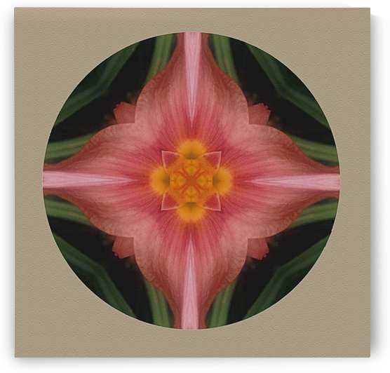 Daylily Bloom In Abstract by ImagesAsArt By John Louis Benzin