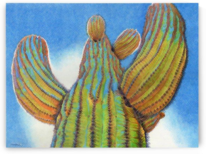 Cactus by Jason Allen Greig
