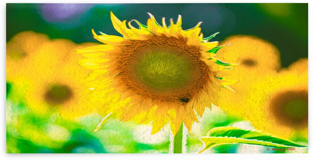 SunFlower by Mentari Arts