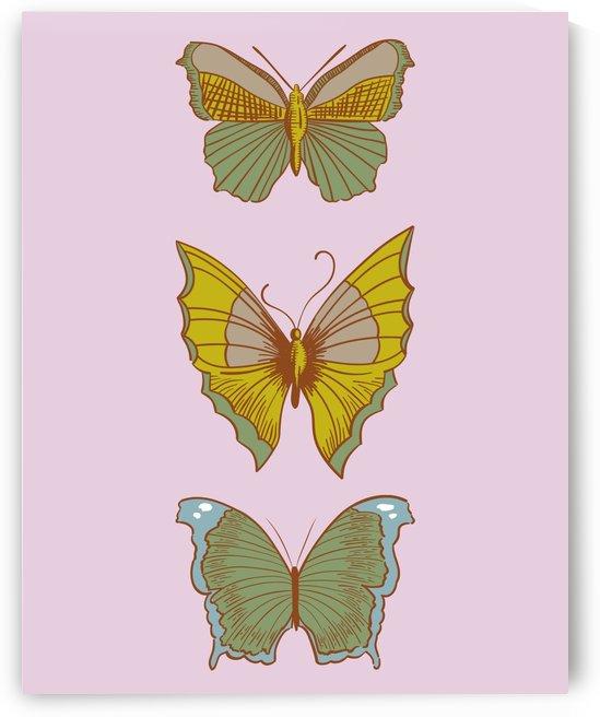 Vintage Style Butterflies by Annie Caropresi
